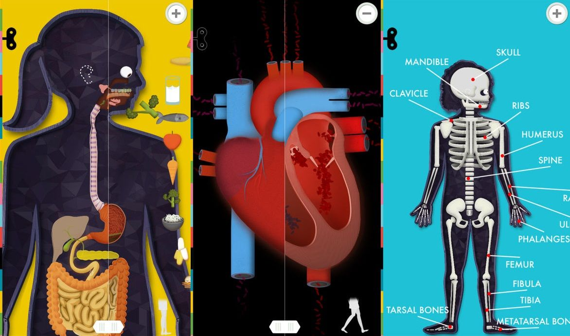 The Human Body Science app