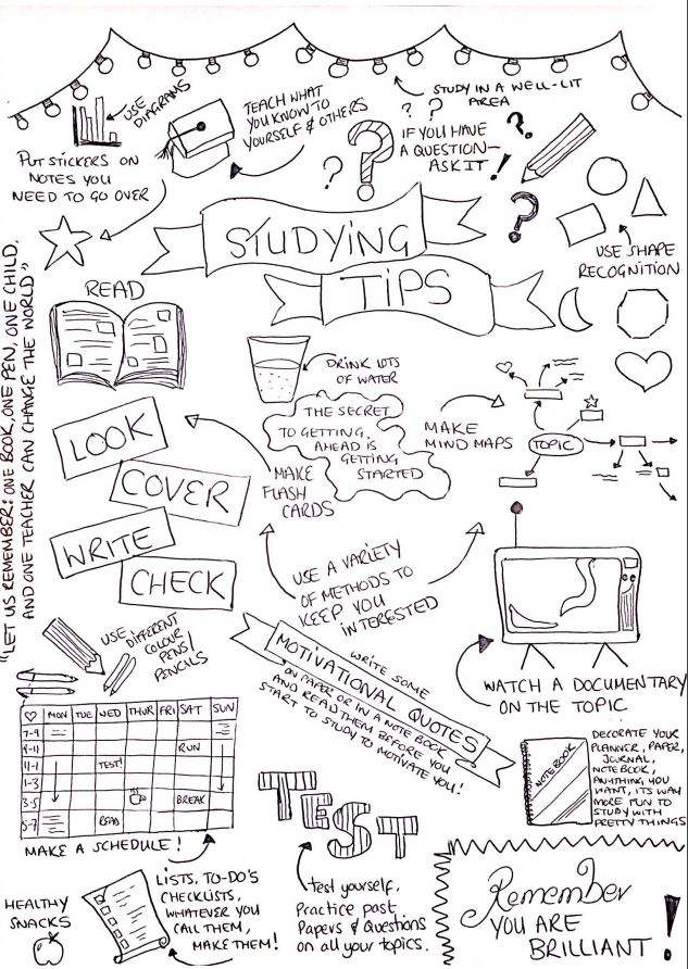 info graphic of studying tips